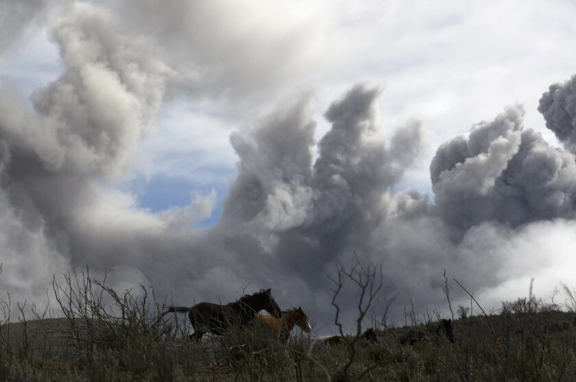 In this Aug. 28, 2015 photo, wild horses run through communal land used for grazing livestock as ash fills the sky from the erupting Cotopaxi volcano, in the village of Ticatilin in Mulalo, Ecuador. Cotopaxi, among the world's most dangerous volcanoes for its proximity to a major city, has been spewing ash and steam and, on a few occasions a small amount of molten rock, for one month. (AP Photo/Cris Toala Olivares)