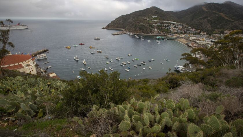 A view of Santa Catalina Island where more than 100 Marines aboard CH-53 helicopters are scheduled to arrive at the Airport in the Sky on Santa Catalina Island to begin repaving the runway.
