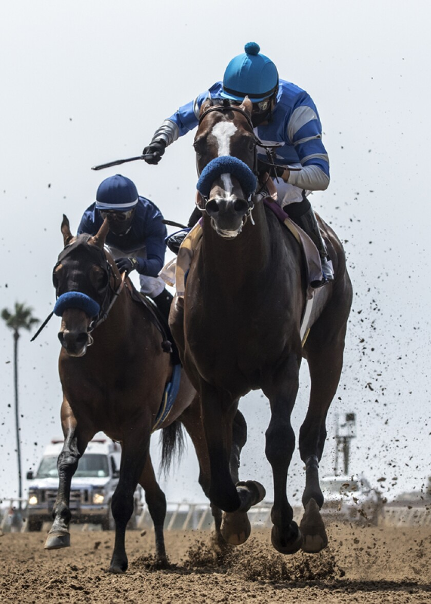 Shared Belief Stakes favorite Honor A. P. was beaten by Thousand Words on Saturday at Del Mar.