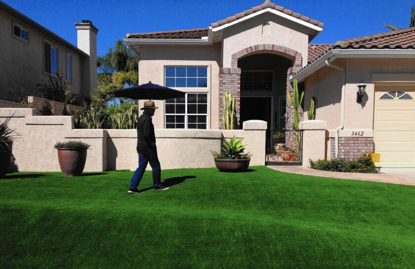 James Zemel spent about $14,000 to install artificial grass at his Carlsbad home.