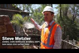 San Diego Zoo Safari Park debuts new Walkabout Australia