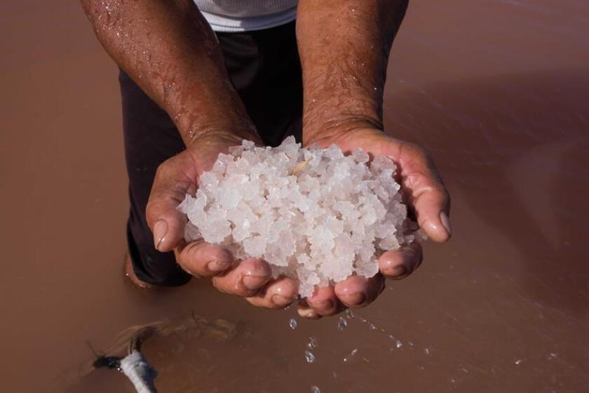 Fotografía que muestra la sal extraída de la salinera en Xtampú, municipio de Dzemul, en el suroriental estado mexicano de Yucatán (México). EFE/Archivo