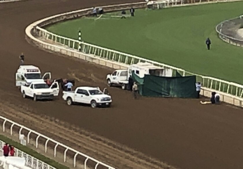 Santa Anita track personnel tend to Emtech, who broke down in the stretch on Saturday.