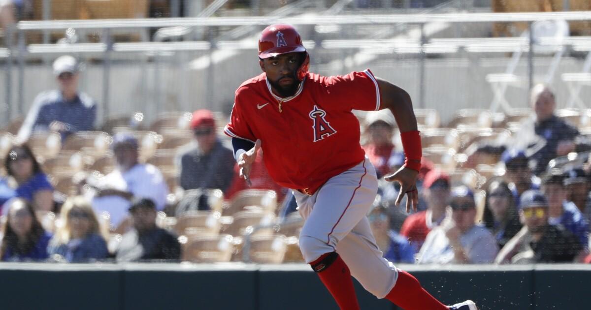 angels dodgers spring baseball 25025.