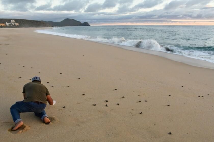 Beach scenery and a small-town vibe make Todos Santos a calming Mexico getaway