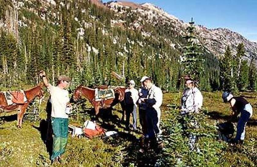 A ranger, left, directs American Hiking Society volunteers restoring a trail in Eagle Cap Wilderness, Ore.