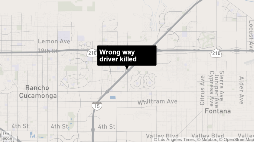 Wrong way driver killed