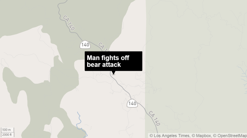 Man fights off bear
