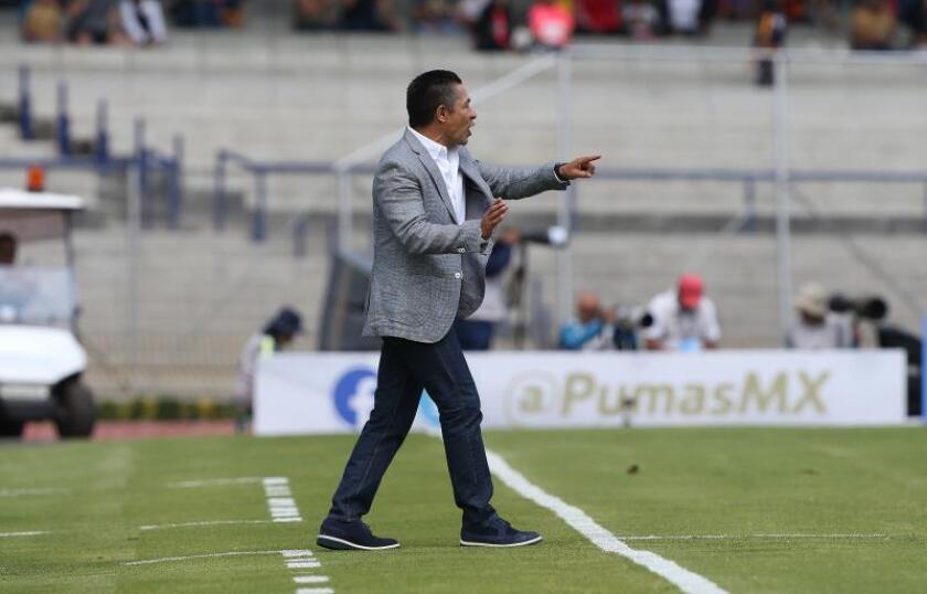 El reto del León: once triunfos seguidos en liga que no tienen precedentes