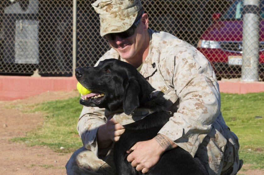Marine Sgt. Andrew Mulherron reunites with Boone on Thursday at Twentynine Palms.