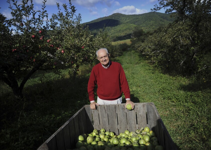 """Tom Burford, author of """"Apples of North America: Exceptional Varieties for Gardeners, Growers, and Cooks,"""" a soon-to-be-released book by Timber Press, checks a crop near his home in Virginia."""