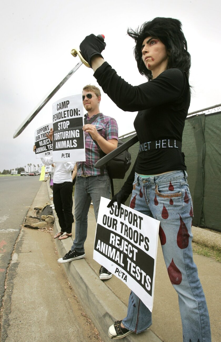 "Members of People for the Ethical Treatment of Animals protested yesterday at the main gate of Camp Pendleton. Nasim Aghdam (front) demonstrated with a plastic sword against the Marines' killing of pigs in a military exercise. ""For me, animal rights equal human rights,"" Aghdam said. (Ch"