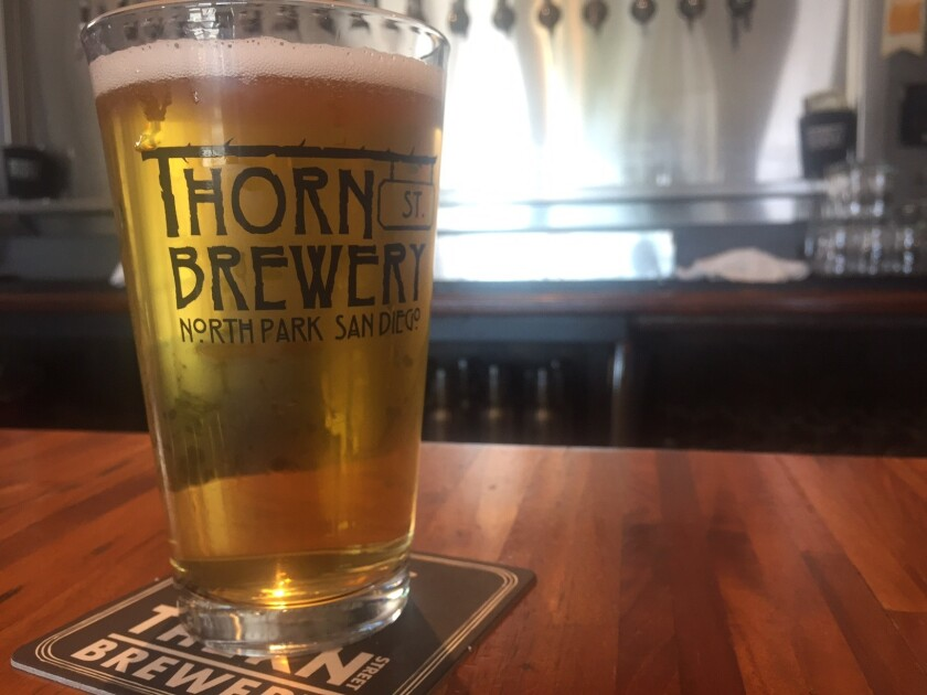 Barrio, a Baja style lager from Thorn St. Brewery (Liz Bowen)