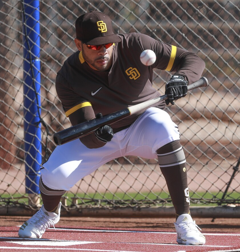 Padres' Tommy Pham bunts during spring training at the Peoria Sports Complex on February 15, 2020 in Peoria, Arizona.
