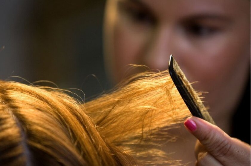Lice may be an embarrassing nuisance, but they're not a health problem.