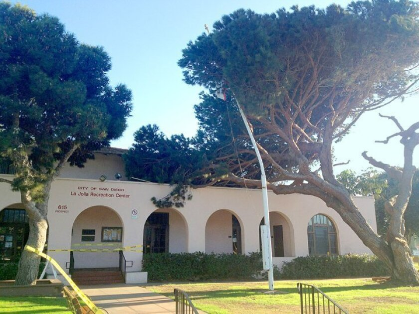 A mature Stone Pine at La Jolla Rec Center — estimated to be 100 years old — had to be removed after it tipped over onto La Jolla Rec Center in the middle of the night (between Oct. 22-23, 2014), bending a flagpole near the entrance.