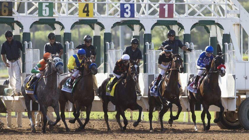 Horses leave the gate at the start of the Grade I $400,000 Beholder Mile at Santa Anita in June.