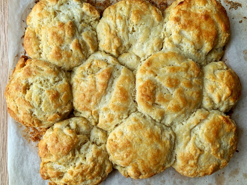 Arranging biscuits so they touch before baking allows them to rise better and gives them fluffier edges.