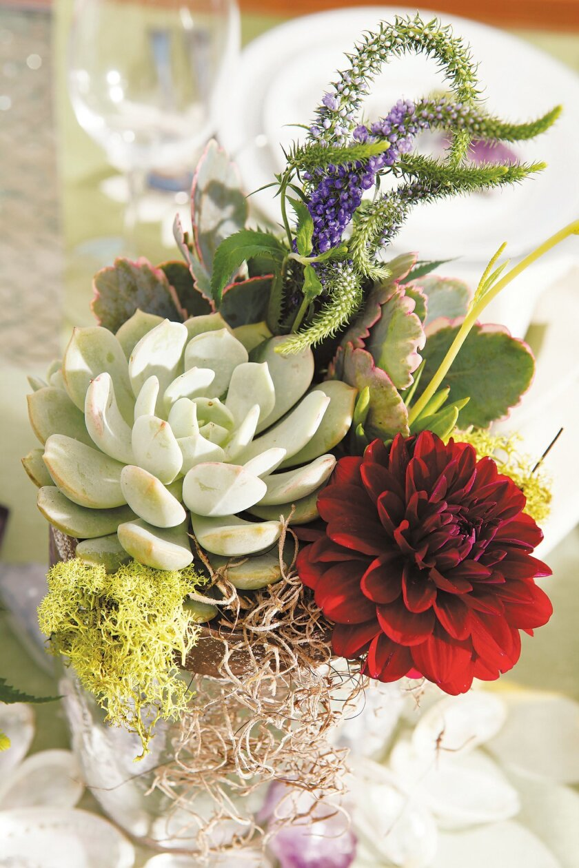 A detail of a centerpiece of succulents and flowers by Tara Teipel.