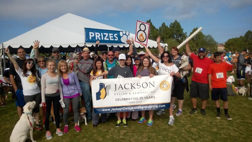 As part of its commitment to give back for their 25th anniversary, the Jackson Design and Remodeling team and canine friends celebrated four-legged Superheroes at the 2014 San Diego Humane Society and SPCA's Walk for Animals.
