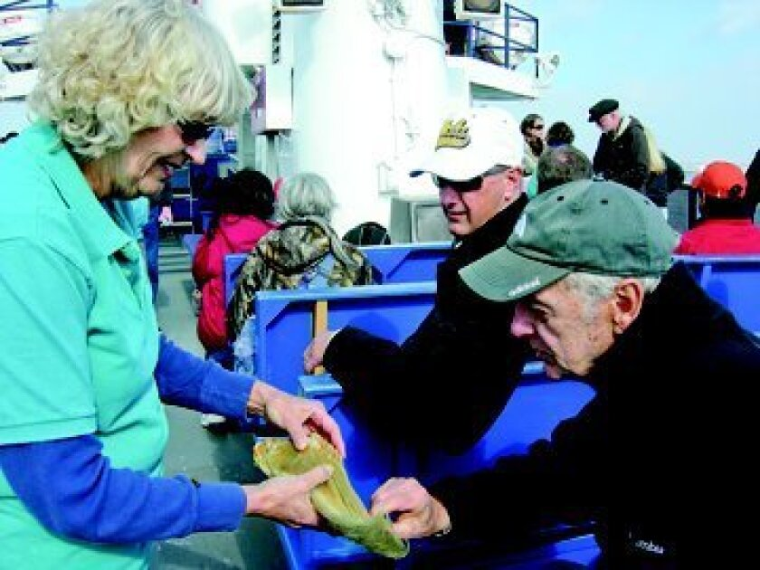 Naturalist enhance the excursions with whale artifacts.