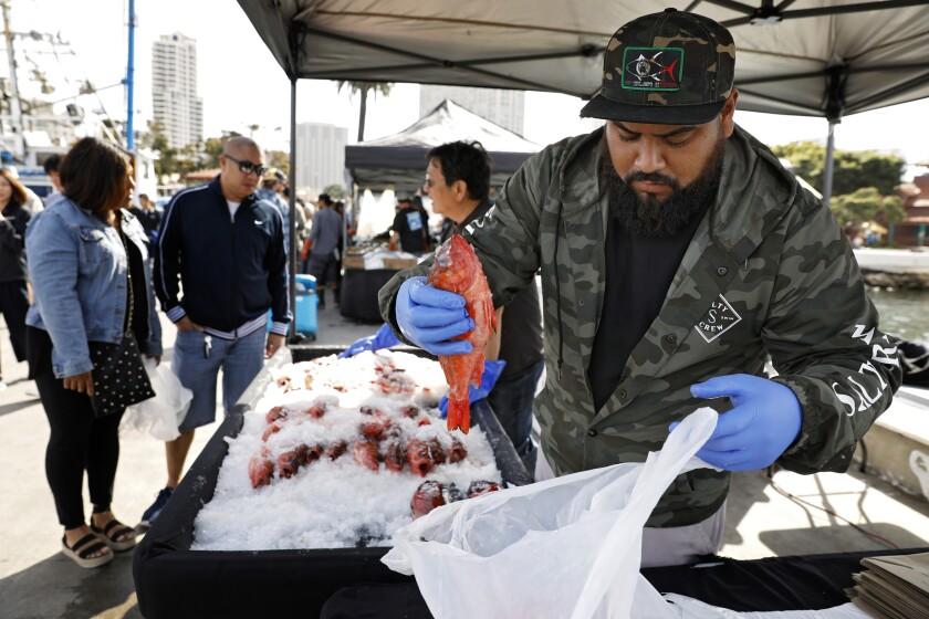 Eric Tapia of Three Boys bags rock fish for a waiting customer at the Tuna Harbor Fisherman's Festival Saturday.