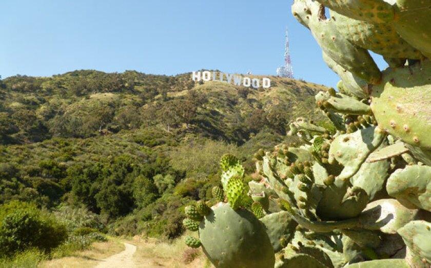 Beachwood Canyon, Hollywood sign