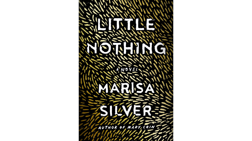 """""""Little Nothing"""" by Marisa Silver"""