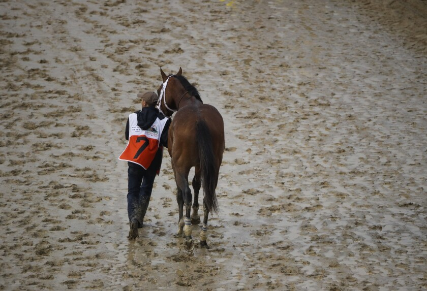 Maximum Security is walked off the track May 4, 2019, after being disqualified in the Kentucky Derby.