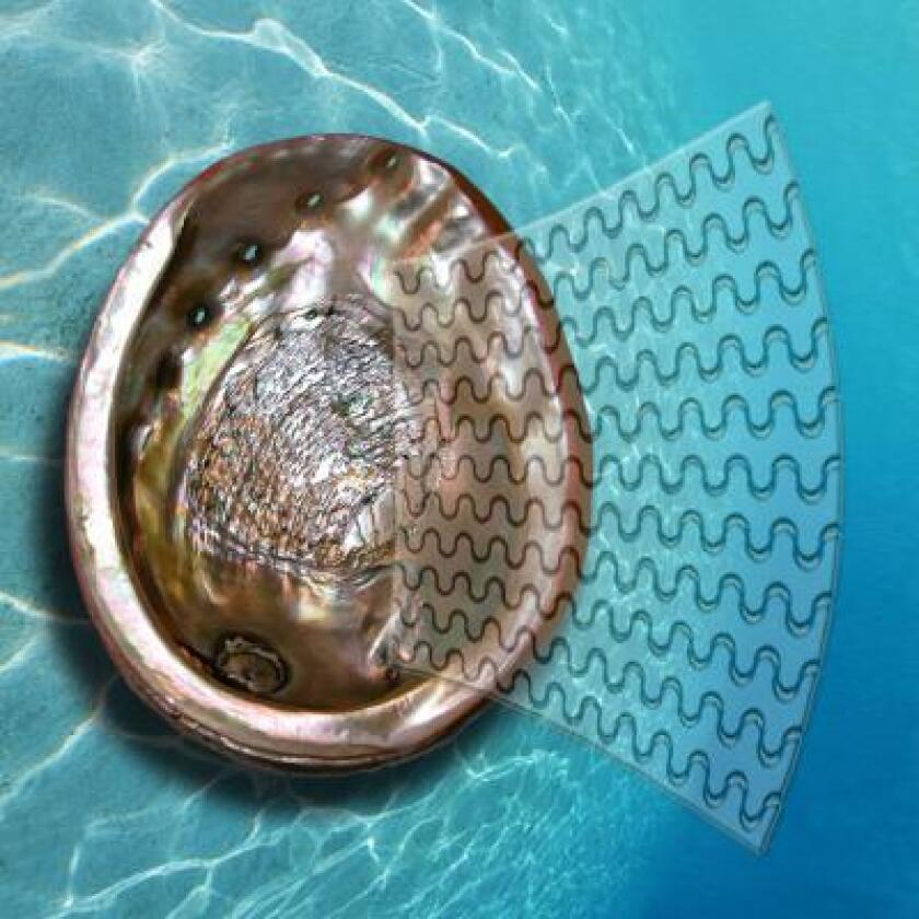 Researchers have turned to nature and objects like seashells for inspiration in order to create glass that is 200 times tougher than normal.