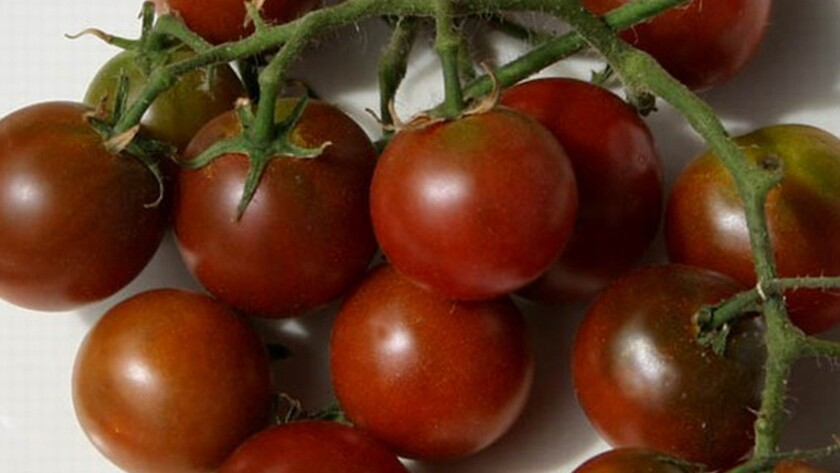 Brown Berry tomatoes.