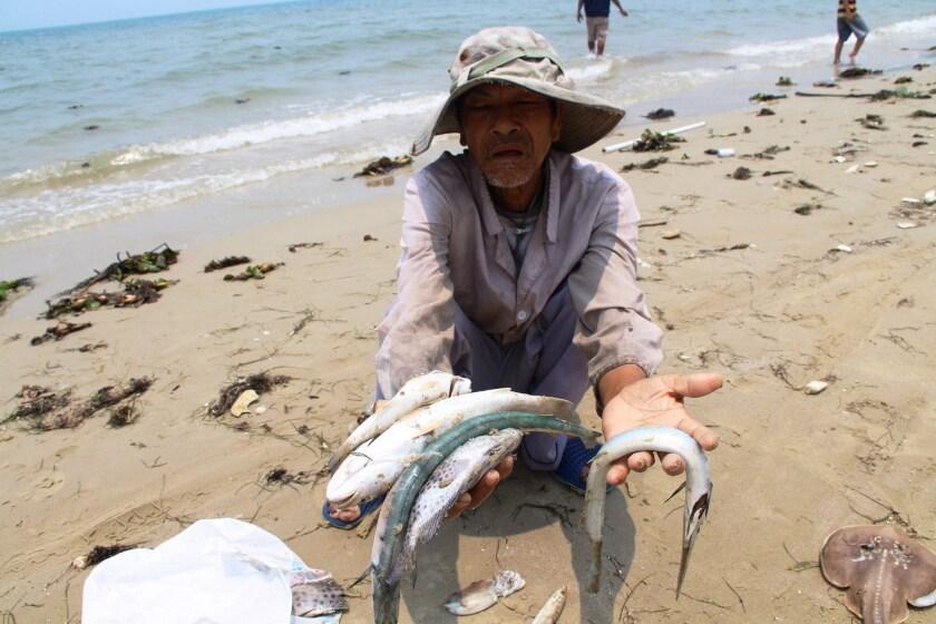 VIETNAM-FISHING-ENVIRONMENT
