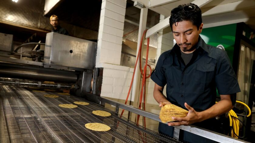 Ommar Ahmed Hernandez, co-owner of Kernel of Truth tortilla company, counts yellow corn tortillas