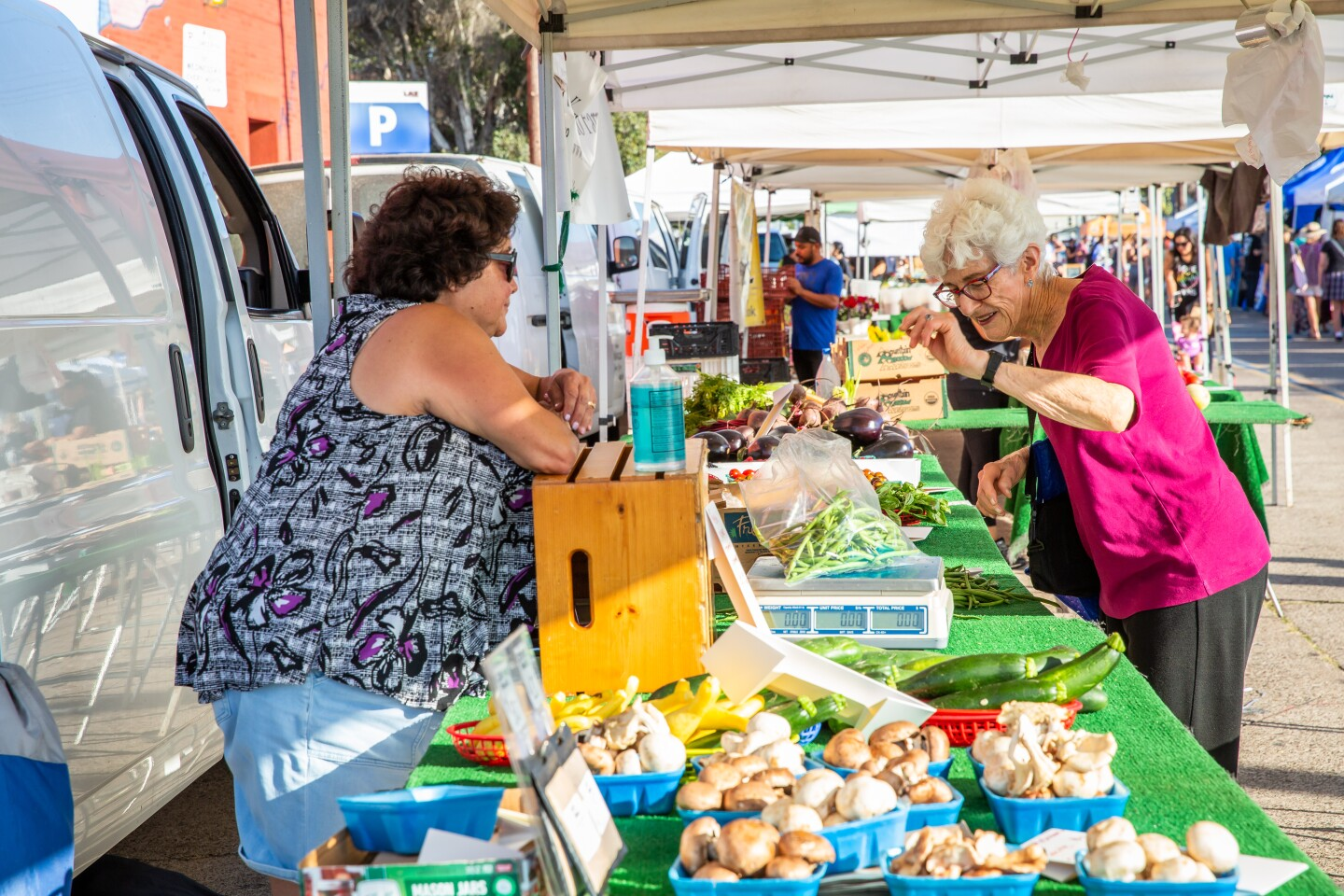 Kim Walters shows customer Eve Anderson her produce on display at the PB Tuesday Farmers' Market on July 20.