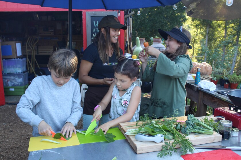 Students chop up locally-grown veggies at the SMARTS Farm at the Orchard.