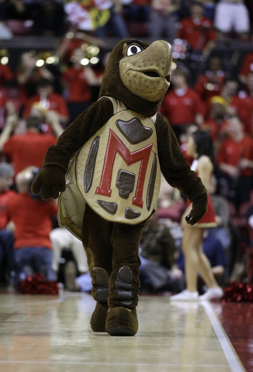 FILE - In this Feb. 11, 2015, file photo, the Maryland Terrapin mascot walks on the court in the second half of an NCAA college basketball game against Indiana, in College Park, Md. (AP Photo/Patrick Semansky, File)