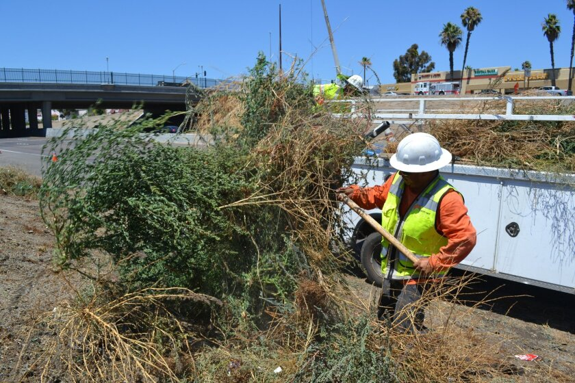 Caltrans contractors Rafael Natividad (front) and Emilio Arcos remove weeds from the Nordahl Road interchange along State Route 78 on Monday. Caltrans is preparing for a $522,000 landscaping project along the busy junction, which straddles the border between San Marcos and Escondido. Photo by Chris Nichols / UT San Diego