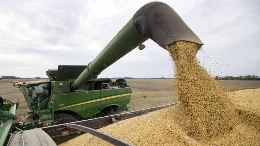 Soybeans are offloaded from a combine in Brownsburg, Ind.