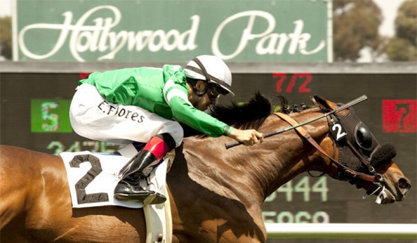 The horse races at Hollywood Park will cease after the race track closes its doors for good on Dec. 22.