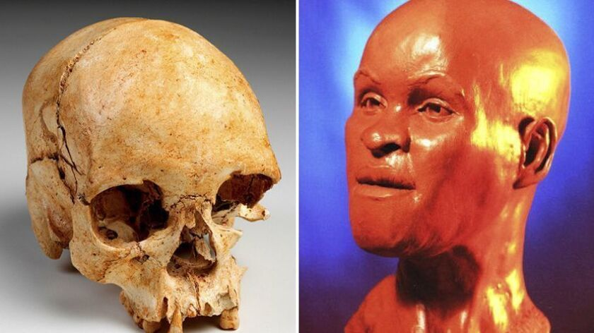 This combination of two undated handout photos provided by Brazil's National Museum shows the skull