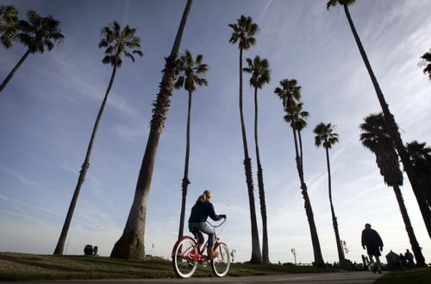 Palm trees line the bike path along the beach in Santa Barbara. The county announced its first coronavirus-related death this week, and its number of confirmed infections increased to 111.