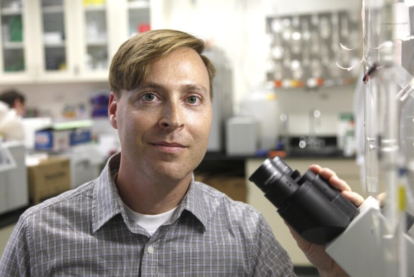 Blue B. Lake, a researcher at UC San Diego, is an author of a new study showing neurons are more diverse in function that previously believed.