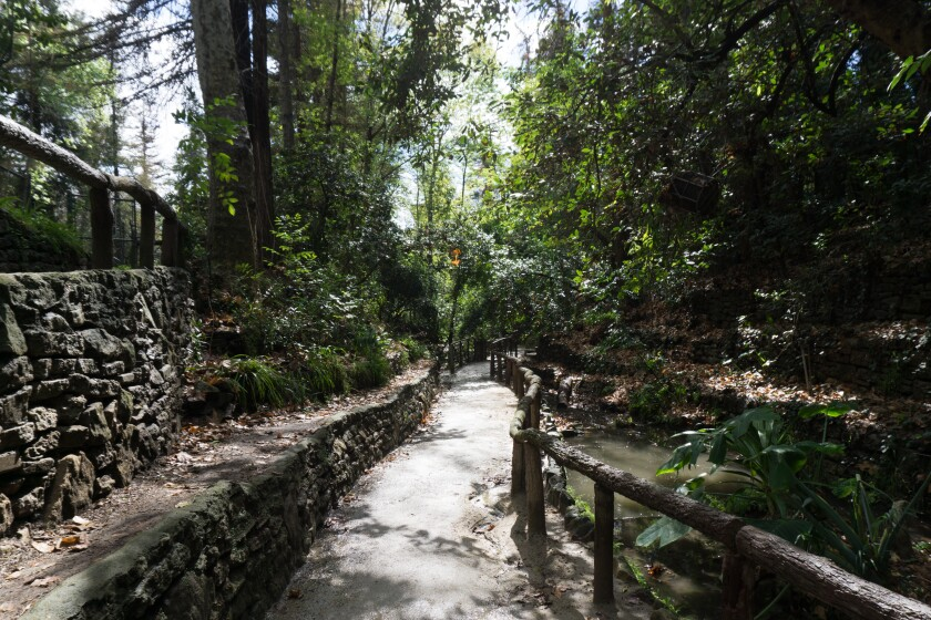 Fern Dell, one of the least trafficked and most beautiful parts of Griffith Park, according to author Casey Schreiner.