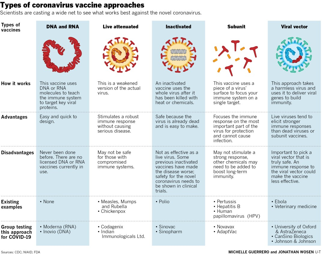 Types of coronavirus vaccine approaches