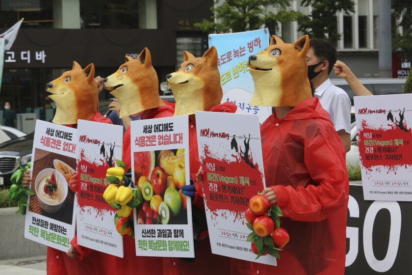 """South Korean vegetarian activists wearing dog masks stage a rally opposing South Korea's culture of eating dog meat in Seoul, South Korea, Thursday, July 16, 2020. Activists wore dog masks and held a mock funeral for a canine during their protests against dog meat consumption in South Korea on Thursday, the first of three """"dog meat days"""" in the Asian country. The signs read: """"There are no edible dogs in the world."""" (AP Photo/Ahn Young-joon)"""