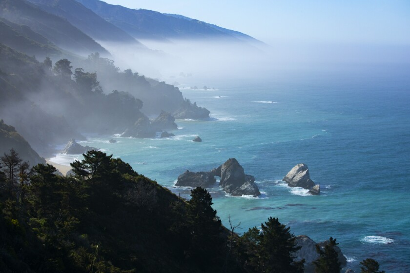 A misty view of the ocean from tree-covered cliffs