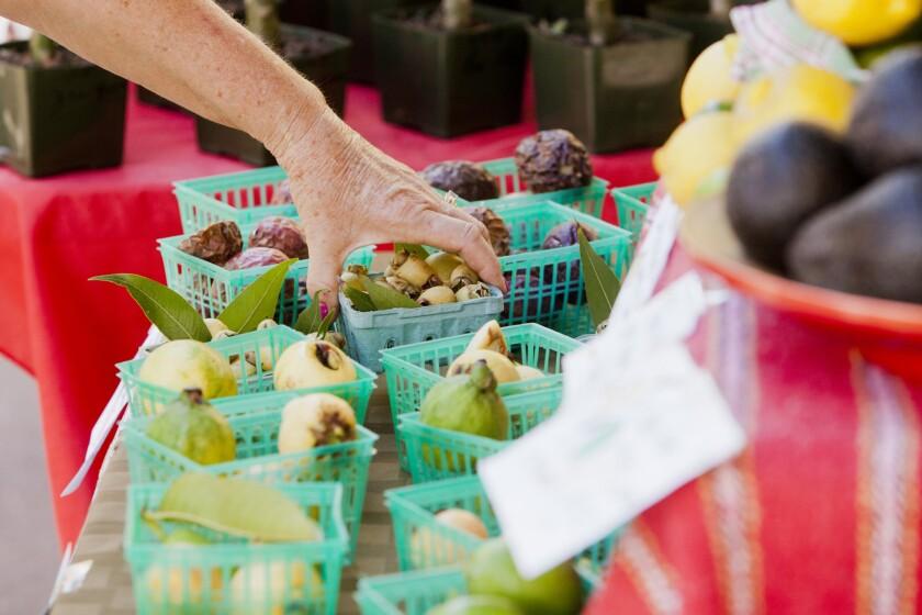 Little Italy Market