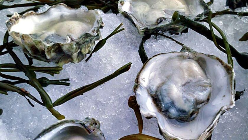 FISHING WITH DYNAMITE: Oysters from the raw bar at Fishing With Dynamite in Manhattan Beach.