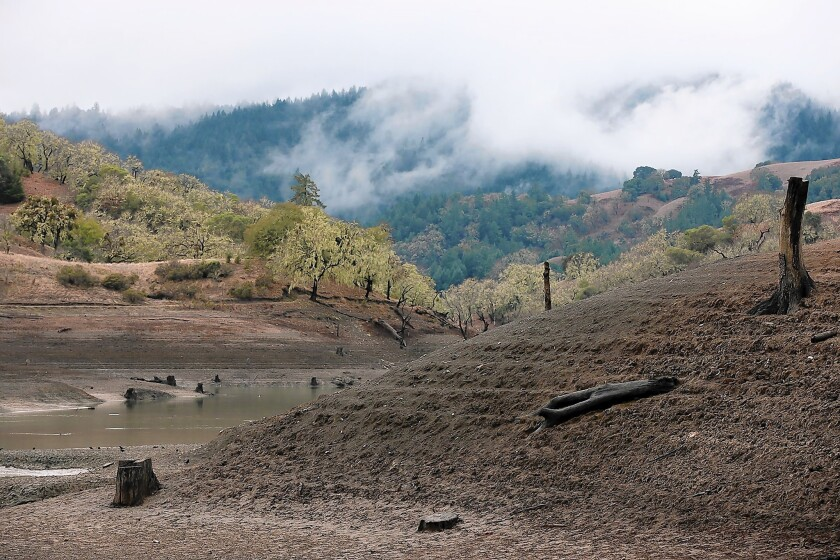 California's employment could be suppressed about 0.2% during the next few years because of the drought, according to the UCLA Anderson Forecast. Above, the banks of Yorty Creek are exposed as water levels drop at Lake Sonoma in California's Sonoma County.