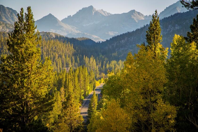 Rock Creek area, Eastern Sierra